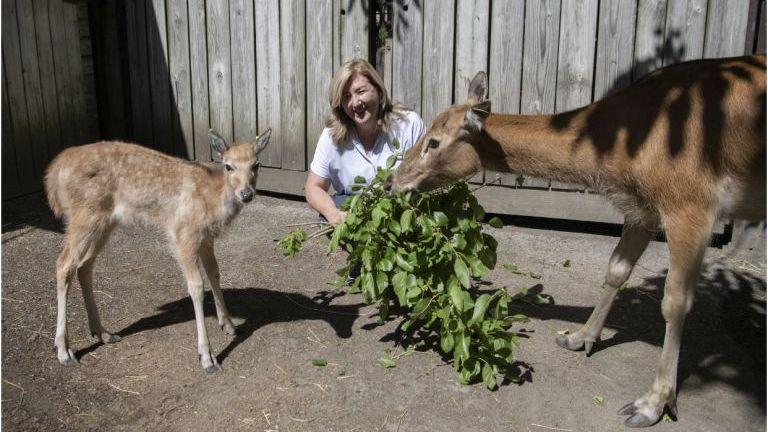 a-wild-animal-curator-comes-home