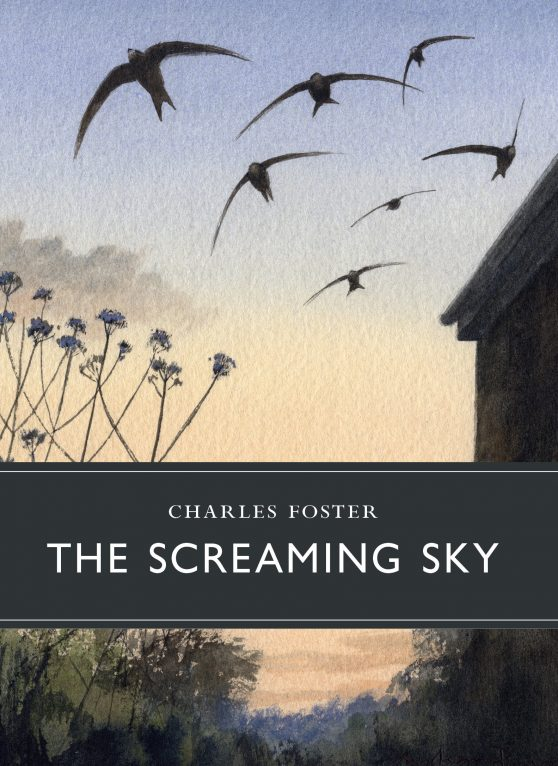 sunday-book-review-–-the-screaming-sky-by-charles-foster
