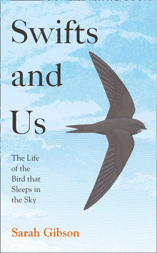 sunday-book-review-–-swifts-and-us-by-sarah-gibson