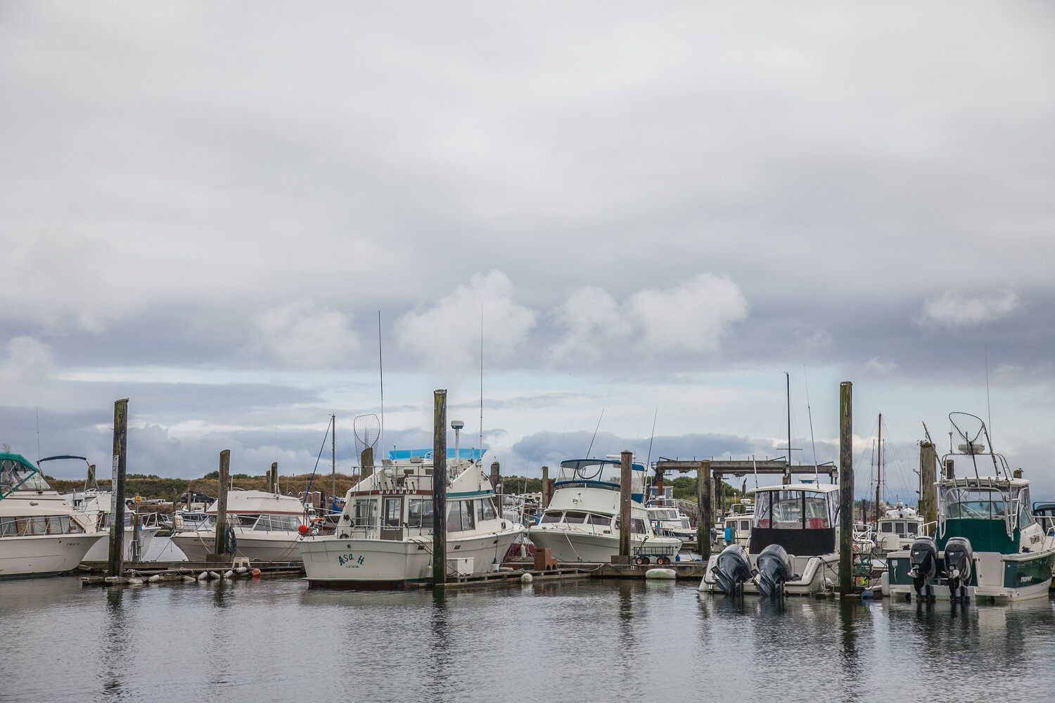 potential-impacts-of-reopening-of-the-trawl-rockfish-conservation-area
