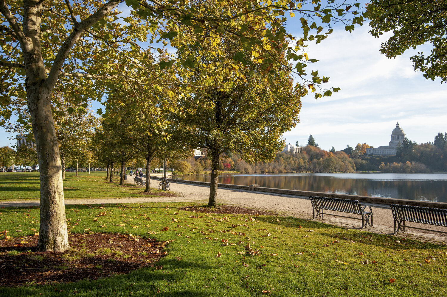 how-are-natural-climate-solutions-showing-up-in-olympia?