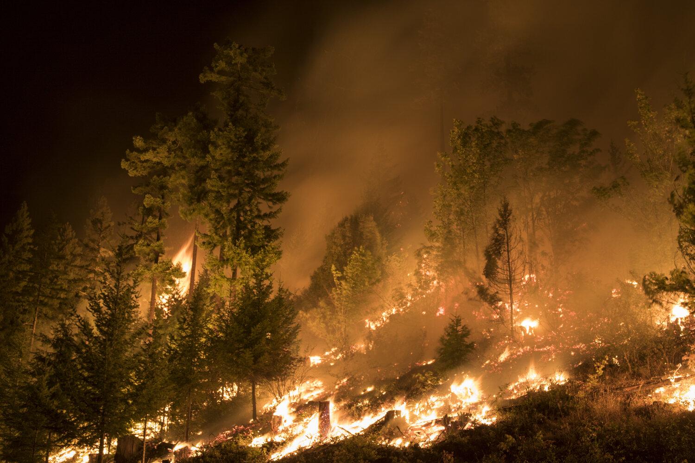 fire-danger-–-tnc-lands-closed-in-eastern-washington