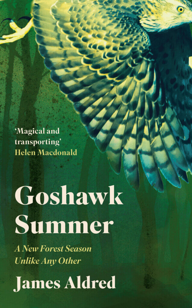 sunday-book-review-–-goshawk-summer-by-james-aldred