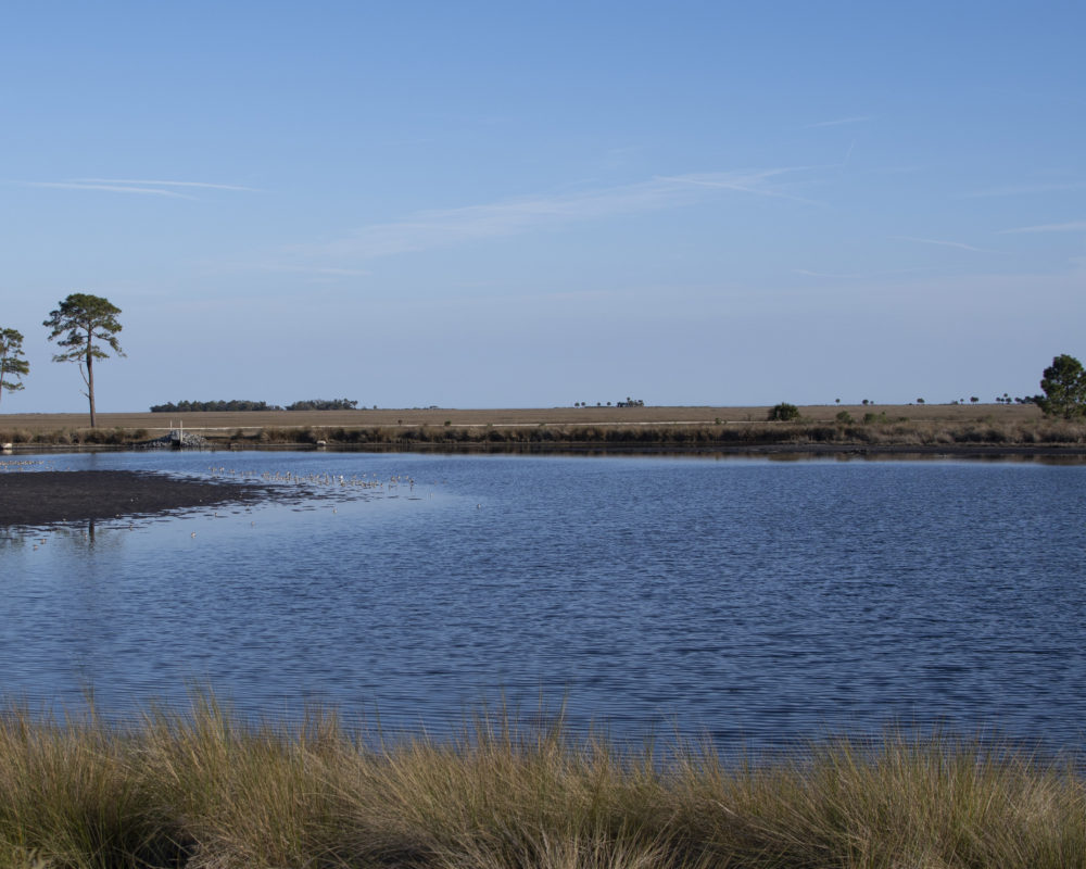 finding-a-photo-blind-in-a-national-wildlife-refuge