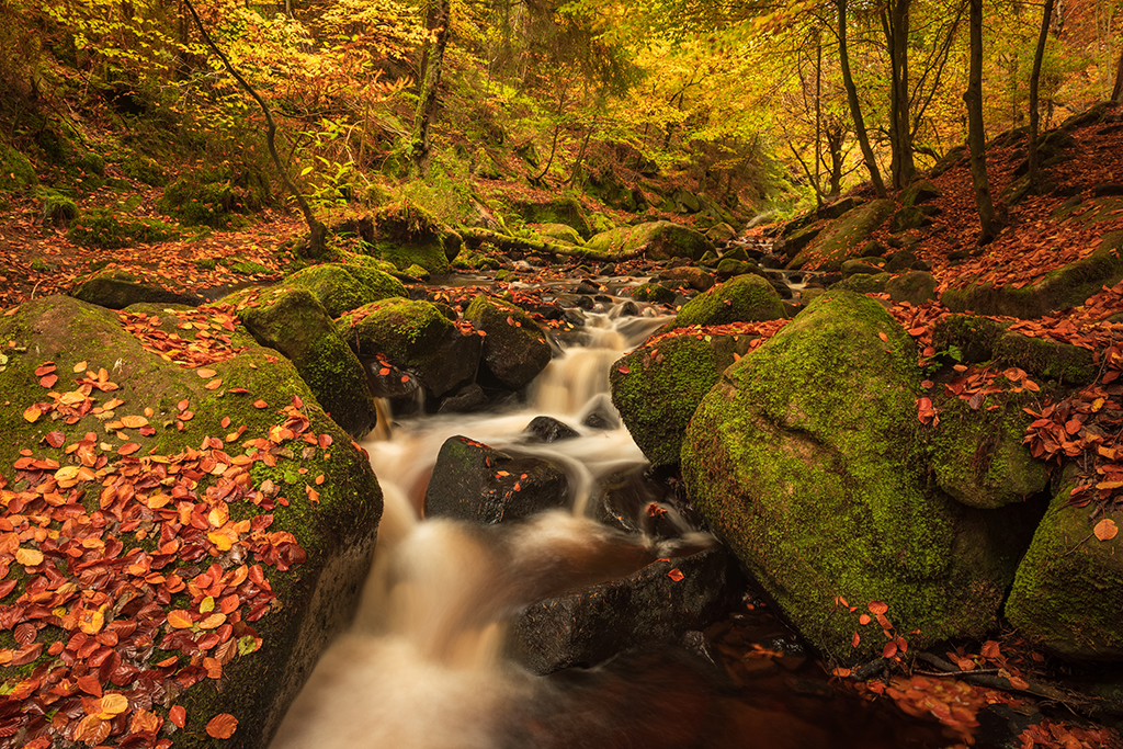 best-uk-locations-for-capturing-autumn-landscapes